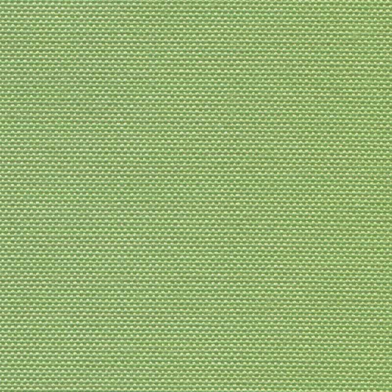 51 (Verde Lime)