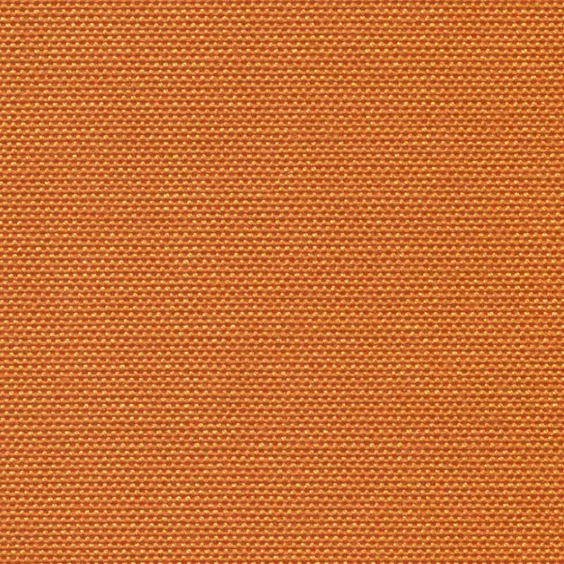 41 (Arancio)